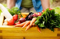 A Menopause Diet for a Healthier, Slimmer and Happier Experience